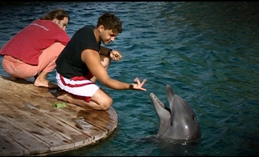 Dolphin%2520boy