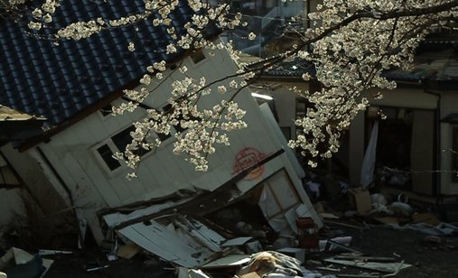 Tsunami_and_the_cherry_blossom_filmstill6