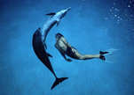 Dolphin_boy