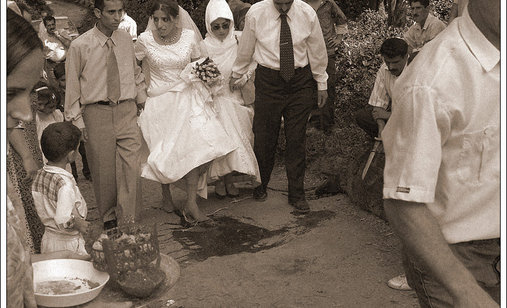Wedding_a_closet_documentary