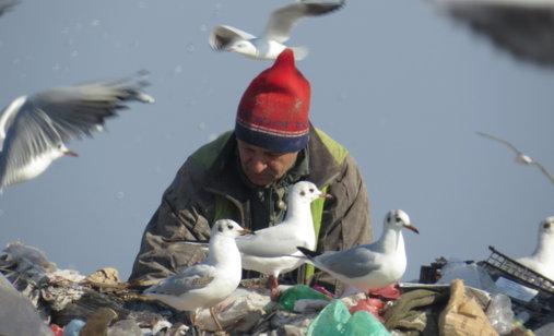 The_landfill_-_photo3